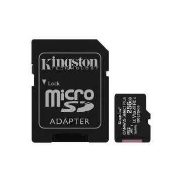 Micro SD Kingston 256GB...